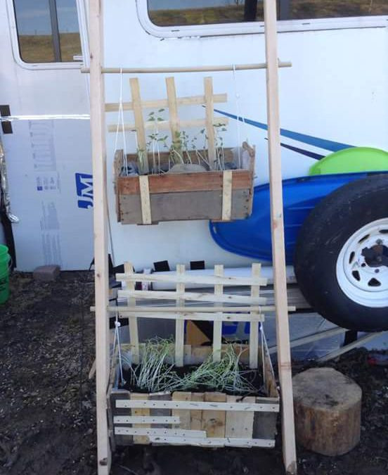 Gardening in Your RV; How to Grow a Garden on the Go